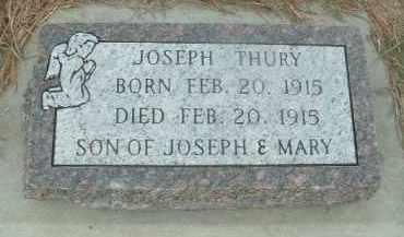 THURY, JOSEPH - Douglas County, South Dakota | JOSEPH THURY - South Dakota Gravestone Photos