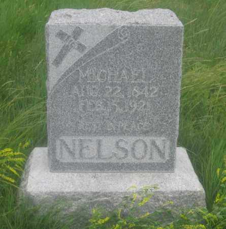 NELSON, MICHAEL - Fall River County, South Dakota | MICHAEL NELSON - South Dakota Gravestone Photos