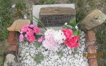 ANSTETT, JOYCE - Fall River County, South Dakota   JOYCE ANSTETT - South Dakota Gravestone Photos