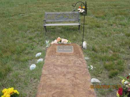 MCCLURE, TED  V. - Fall River County, South Dakota   TED  V. MCCLURE - South Dakota Gravestone Photos