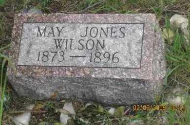 WILSON, MARY - Fall River County, South Dakota   MARY WILSON - South Dakota Gravestone Photos