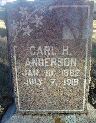 ANDERSON, CARL H. - Grant County, South Dakota | CARL H. ANDERSON - South Dakota Gravestone Photos
