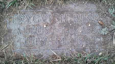 BINDE, TRYGVE H - Grant County, South Dakota | TRYGVE H BINDE - South Dakota Gravestone Photos