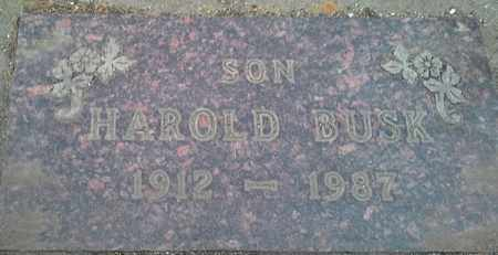 BUSK, HAROLD - Grant County, South Dakota | HAROLD BUSK - South Dakota Gravestone Photos