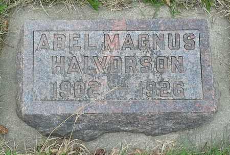 HALVORSON, ABLE MAGNUS - Grant County, South Dakota | ABLE MAGNUS HALVORSON - South Dakota Gravestone Photos
