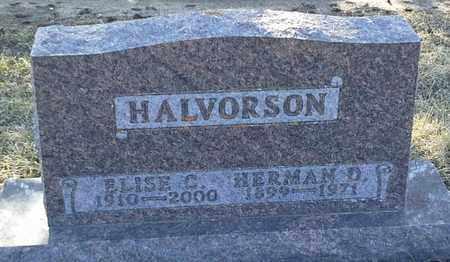 HALVORSON, HERMAN D - Grant County, South Dakota | HERMAN D HALVORSON - South Dakota Gravestone Photos