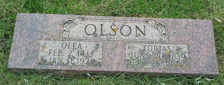 OLSON, OLEA - Grant County, South Dakota | OLEA OLSON - South Dakota Gravestone Photos