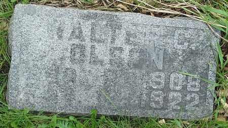 OLSON, WALTER C - Grant County, South Dakota   WALTER C OLSON - South Dakota Gravestone Photos