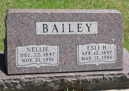 TAYLOR BAILEY, NELLIE - Gregory County, South Dakota | NELLIE TAYLOR BAILEY - South Dakota Gravestone Photos