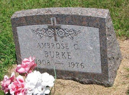 BURKE, AMBROSE C. - Gregory County, South Dakota | AMBROSE C. BURKE - South Dakota Gravestone Photos