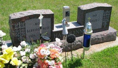 HAUSMANN, DONALD J. - Gregory County, South Dakota | DONALD J. HAUSMANN - South Dakota Gravestone Photos
