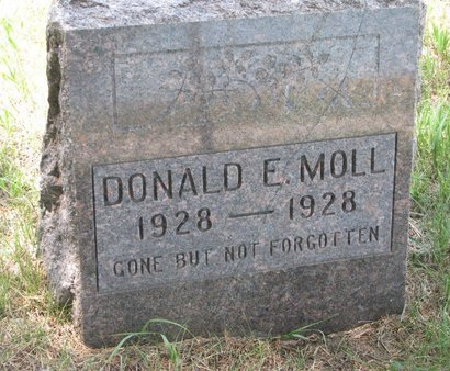 MOLL, DONALD E. - Gregory County, South Dakota | DONALD E. MOLL - South Dakota Gravestone Photos