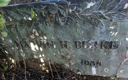 BERKE, MARVIN - Haakon County, South Dakota | MARVIN BERKE - South Dakota Gravestone Photos