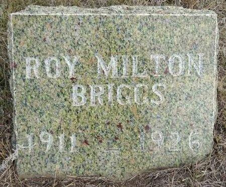 BRIGGS, ROY - Haakon County, South Dakota   ROY BRIGGS - South Dakota Gravestone Photos