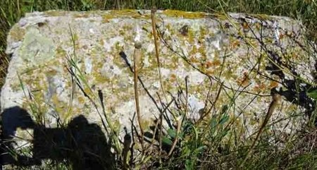 CARLSON, JETTE - Haakon County, South Dakota   JETTE CARLSON - South Dakota Gravestone Photos