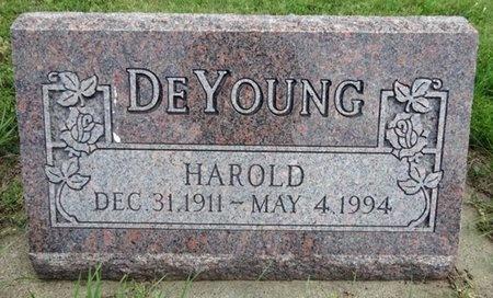 DEYOUNG, HAROLD - Haakon County, South Dakota | HAROLD DEYOUNG - South Dakota Gravestone Photos