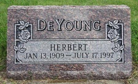 DEYOUNG, HERBERT - Haakon County, South Dakota | HERBERT DEYOUNG - South Dakota Gravestone Photos