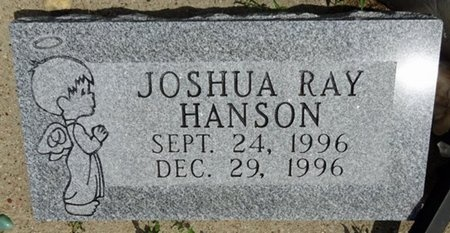 HANSON, JOSHUA - Haakon County, South Dakota | JOSHUA HANSON - South Dakota Gravestone Photos