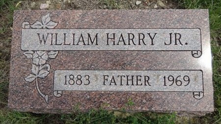 HARRY, JR., WILLIAM - Haakon County, South Dakota   WILLIAM HARRY, JR. - South Dakota Gravestone Photos