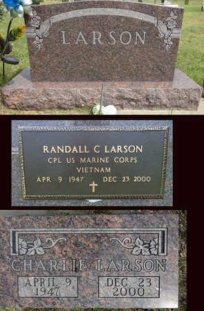 LARSON, CHARLIE - Haakon County, South Dakota | CHARLIE LARSON - South Dakota Gravestone Photos