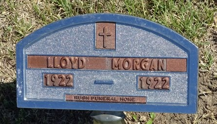 MORGAN, LLOYD - Haakon County, South Dakota | LLOYD MORGAN - South Dakota Gravestone Photos