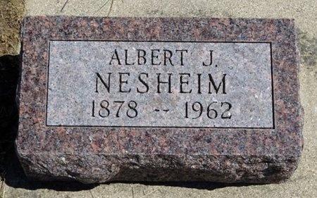 NESHEIM, ALBERT - Haakon County, South Dakota   ALBERT NESHEIM - South Dakota Gravestone Photos