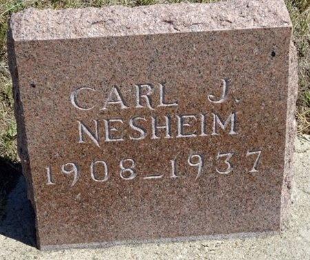 NESHEIM, CARL - Haakon County, South Dakota | CARL NESHEIM - South Dakota Gravestone Photos