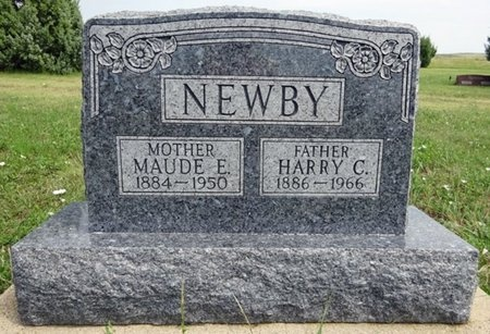 NEWBY, HARRY - Haakon County, South Dakota | HARRY NEWBY - South Dakota Gravestone Photos