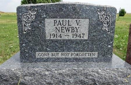 NEWBY, PAUL - Haakon County, South Dakota | PAUL NEWBY - South Dakota Gravestone Photos