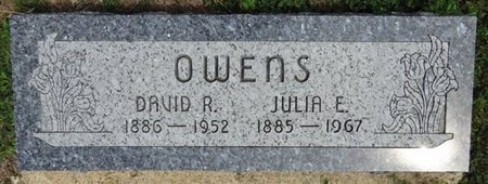 OWENS, DAVID - Haakon County, South Dakota | DAVID OWENS - South Dakota Gravestone Photos