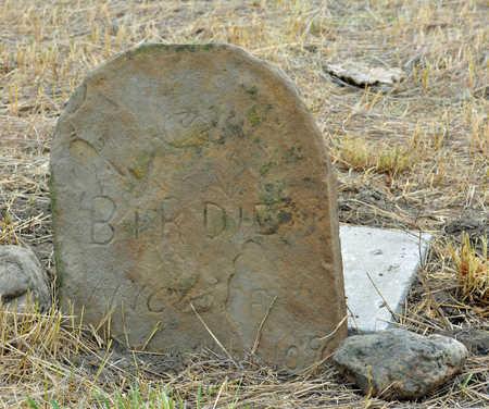 WYCKOFF, BIRDIE - Haakon County, South Dakota | BIRDIE WYCKOFF - South Dakota Gravestone Photos