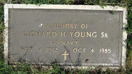 YOUNG, RICHARD - Haakon County, South Dakota   RICHARD YOUNG - South Dakota Gravestone Photos