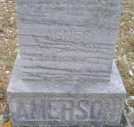 AMERSON, AGNES - Hamlin County, South Dakota | AGNES AMERSON - South Dakota Gravestone Photos