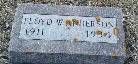 ANDERSON, FLOYD W - Hamlin County, South Dakota | FLOYD W ANDERSON - South Dakota Gravestone Photos