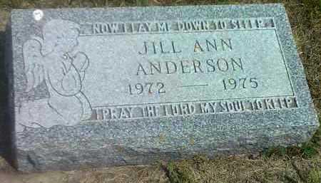 ANDERSON, JILL ANN - Hamlin County, South Dakota | JILL ANN ANDERSON - South Dakota Gravestone Photos