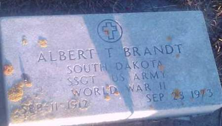 BRANDT, ALBERT T (MILITARY) - Hamlin County, South Dakota | ALBERT T (MILITARY) BRANDT - South Dakota Gravestone Photos