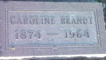 BRANDT, CAROLINE - Hamlin County, South Dakota | CAROLINE BRANDT - South Dakota Gravestone Photos
