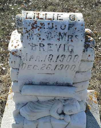 BREVIG, LILLIE G - Hamlin County, South Dakota   LILLIE G BREVIG - South Dakota Gravestone Photos