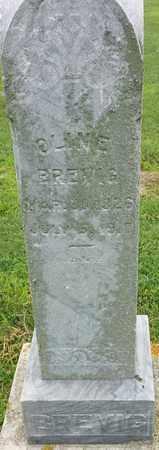 BREVIG, OLIVE - Hamlin County, South Dakota   OLIVE BREVIG - South Dakota Gravestone Photos