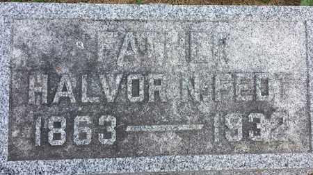 FEDT, HALVOR N - Hamlin County, South Dakota   HALVOR N FEDT - South Dakota Gravestone Photos