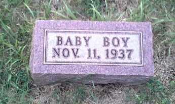 FEDT, INFANT - Hamlin County, South Dakota   INFANT FEDT - South Dakota Gravestone Photos