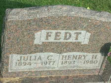 FEDT, HENRY H - Hamlin County, South Dakota | HENRY H FEDT - South Dakota Gravestone Photos