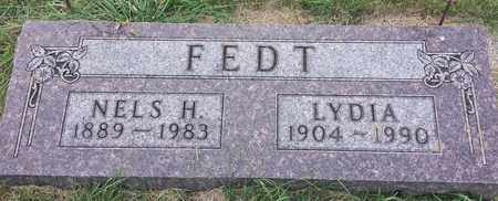 FEDT, NELS H - Hamlin County, South Dakota | NELS H FEDT - South Dakota Gravestone Photos