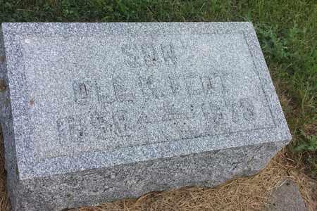 FEDT, OLE K - Hamlin County, South Dakota | OLE K FEDT - South Dakota Gravestone Photos