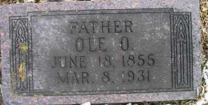 JAGER, OLE O - Hamlin County, South Dakota   OLE O JAGER - South Dakota Gravestone Photos