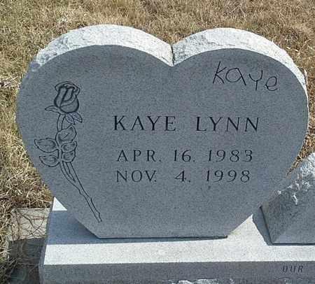 JOHNSON, KAYE LYNN - Hamlin County, South Dakota | KAYE LYNN JOHNSON - South Dakota Gravestone Photos