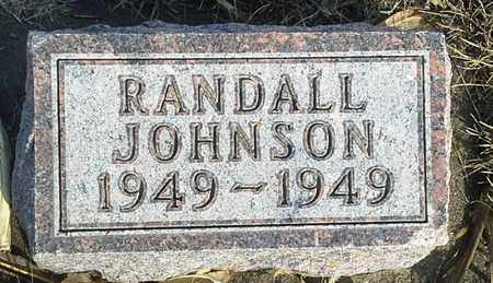 JOHNSON, RANDALL - Hamlin County, South Dakota | RANDALL JOHNSON - South Dakota Gravestone Photos