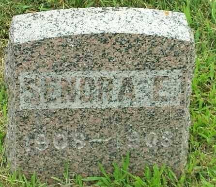 JOHNSON, SENDRA E - Hamlin County, South Dakota | SENDRA E JOHNSON - South Dakota Gravestone Photos