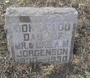 JORGENSON, DONNA LOU - Hamlin County, South Dakota | DONNA LOU JORGENSON - South Dakota Gravestone Photos