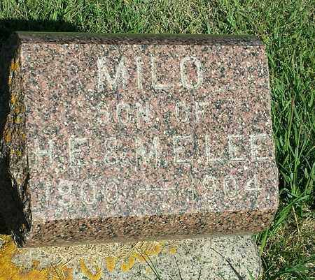 LEE, MILO - Hamlin County, South Dakota   MILO LEE - South Dakota Gravestone Photos